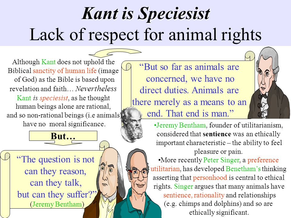 Kant is Speciesist Kant is Speciesist Lack of respect for animal rights Although Kant does not uphold the Biblical sanctity of human life (image of Go