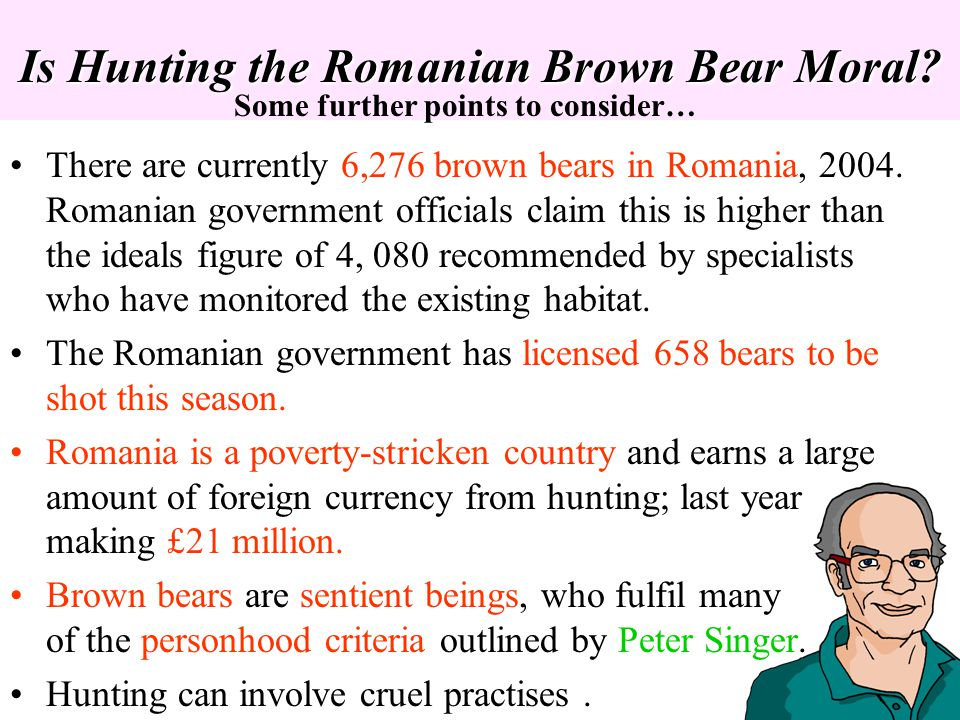 Is Hunting the Romanian Brown Bear Moral? There are currently 6,276 brown bears in Romania, 2004. Romanian government officials claim this is higher t