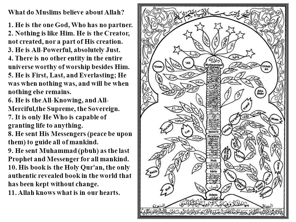 What do Muslims believe about Allah? 1. He is the one God, Who has no partner. 2. Nothing is like Him. He is the Creator, not created, nor a part of H