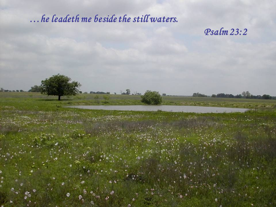 …he leadeth me beside the still waters. Psalm 23:2