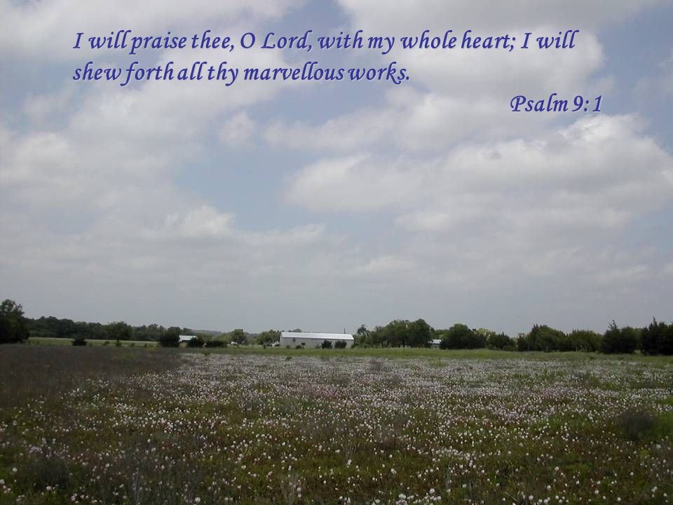I will praise thee, O Lord, with my whole heart; I will shew forth all thy marvellous works. Psalm 9:1