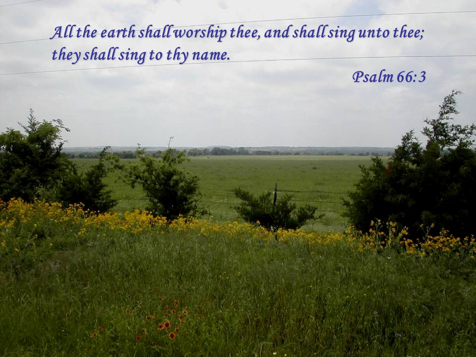 All the earth shall worship thee, and shall sing unto thee; they shall sing to thy name. Psalm 66:3