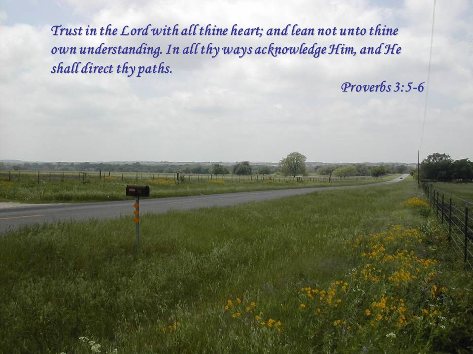 Trust in the Lord with all thine heart; and lean not unto thine own understanding. In all thy ways acknowledge Him, and He shall direct thy paths. Pro