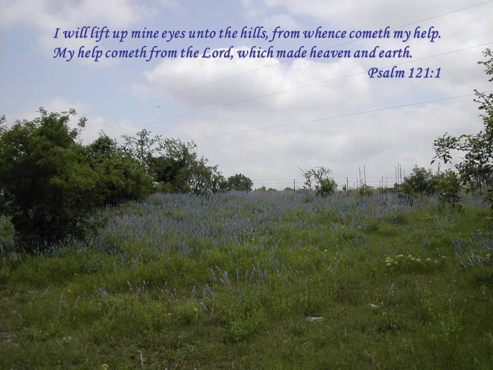 I will lift up mine eyes unto the hills, from whence cometh my help. My help cometh from the Lord, which made heaven and earth. Psalm 121:1