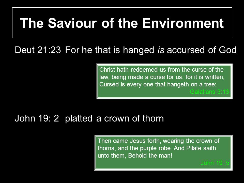 The Saviour of the Environment Deut 21:23For he that is hanged is accursed of God John 19: 2platted a crown of thorn Christ hath redeemed us from the curse of the law, being made a curse for us: for it is written, Cursed is every one that hangeth on a tree: Galatians 3:13 Then came Jesus forth, wearing the crown of thorns, and the purple robe.