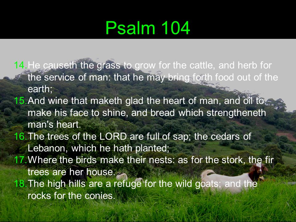 Psalm 104 19.He appointed the moon for seasons: the sun knoweth his going down.