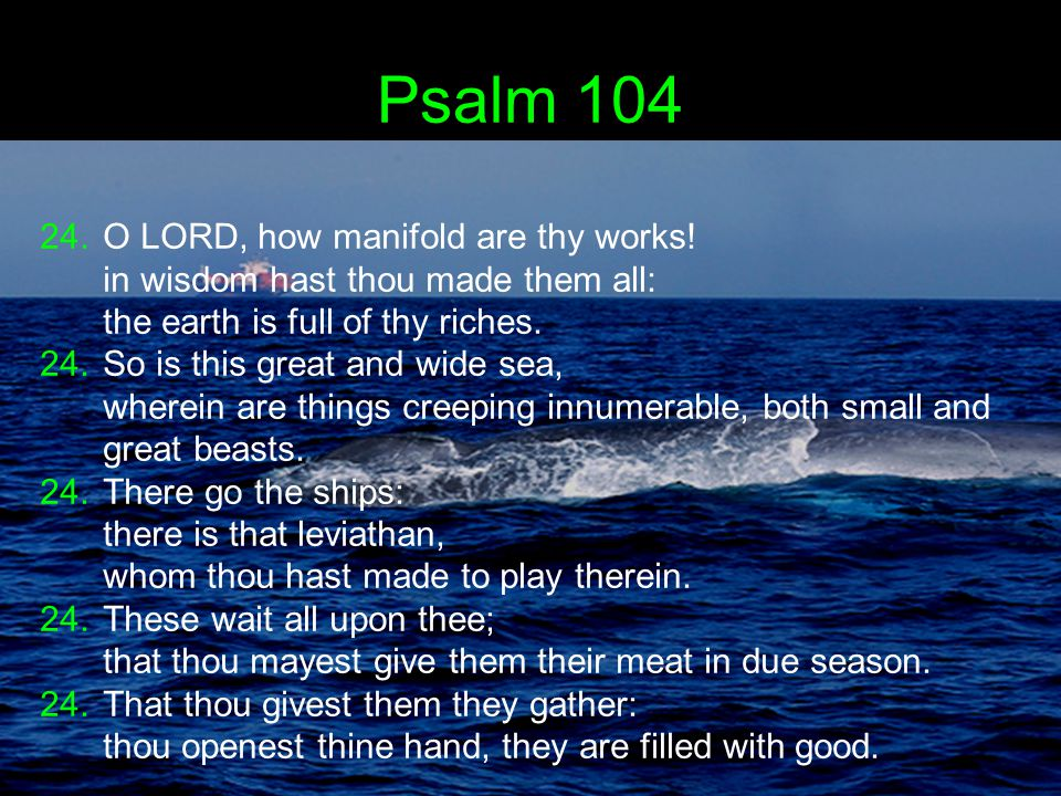Psalm 104 24.O LORD, how manifold are thy works.