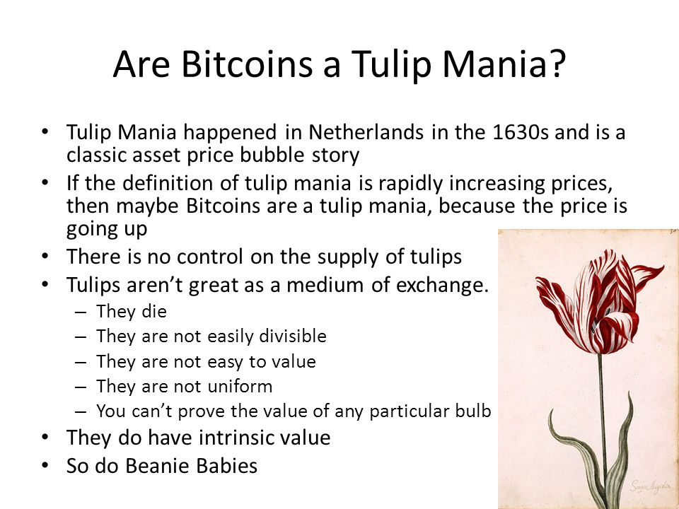 Are Bitcoins a Tulip Mania? Tulip Mania happened in Netherlands in the 1630s and is a classic asset price bubble story If the definition of tulip mani