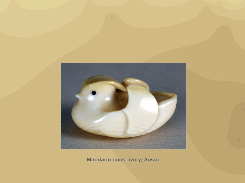 Mandarin duck: ivory, Sosui