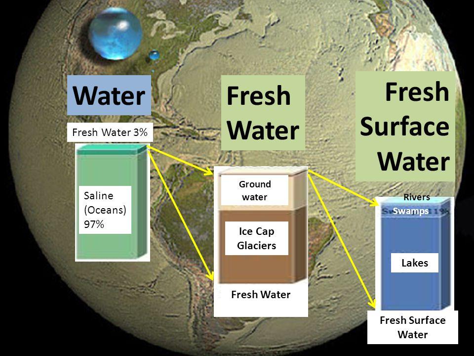 Fresh Water 3% Saline (Oceans) 97% Ice Cap Glaciers Ground water Rivers Swamps Fresh Water Lakes Fresh Surface Water Fresh Water Fresh Surface Water