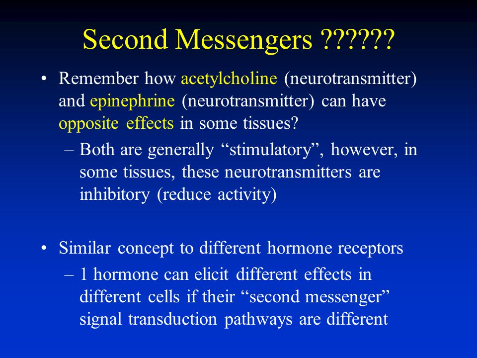 Second Messengers ?????.