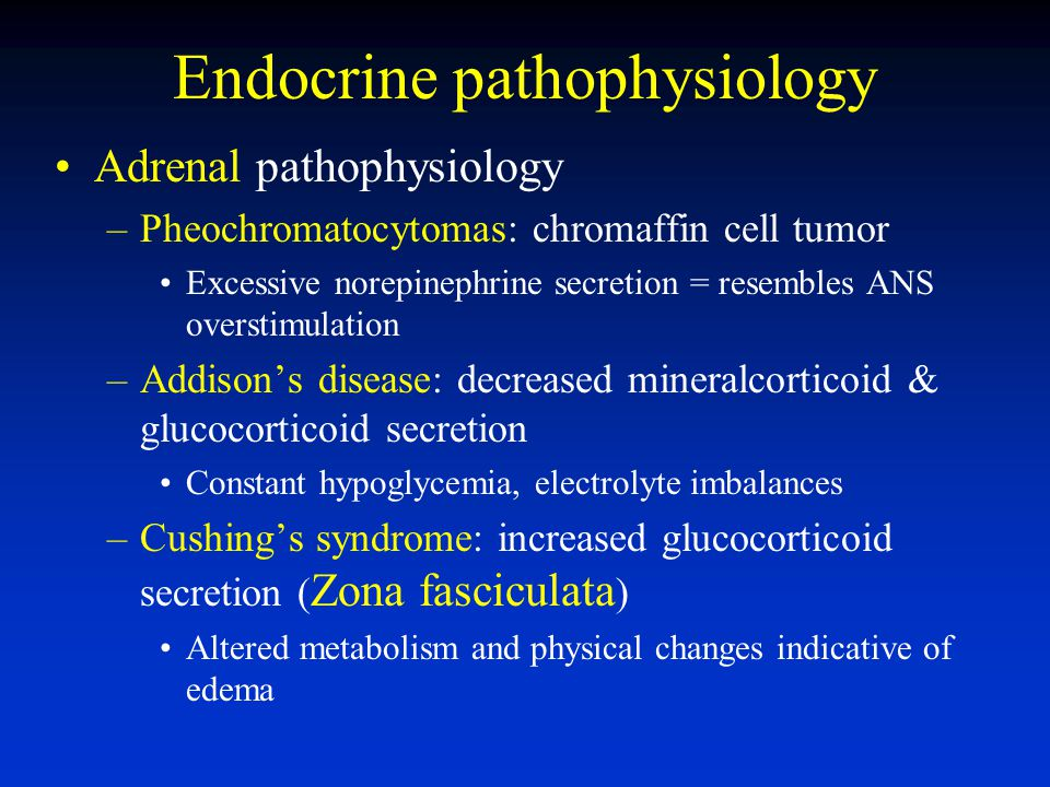 Endocrine pathophysiology Adrenal pathophysiology –Pheochromatocytomas: chromaffin cell tumor Excessive norepinephrine secretion = resembles ANS overstimulation –Addisons disease: decreased mineralcorticoid & glucocorticoid secretion Constant hypoglycemia, electrolyte imbalances –Cushings syndrome: increased glucocorticoid secretion ( Zona fasciculata ) Altered metabolism and physical changes indicative of edema