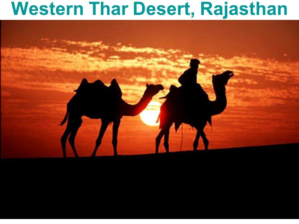 Western Thar Desert, Rajasthan