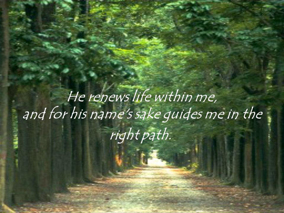 The Lord is my shepherd; I shall want nothing. He makes me lie down in green pastures, and leads me beside the waters of peace;