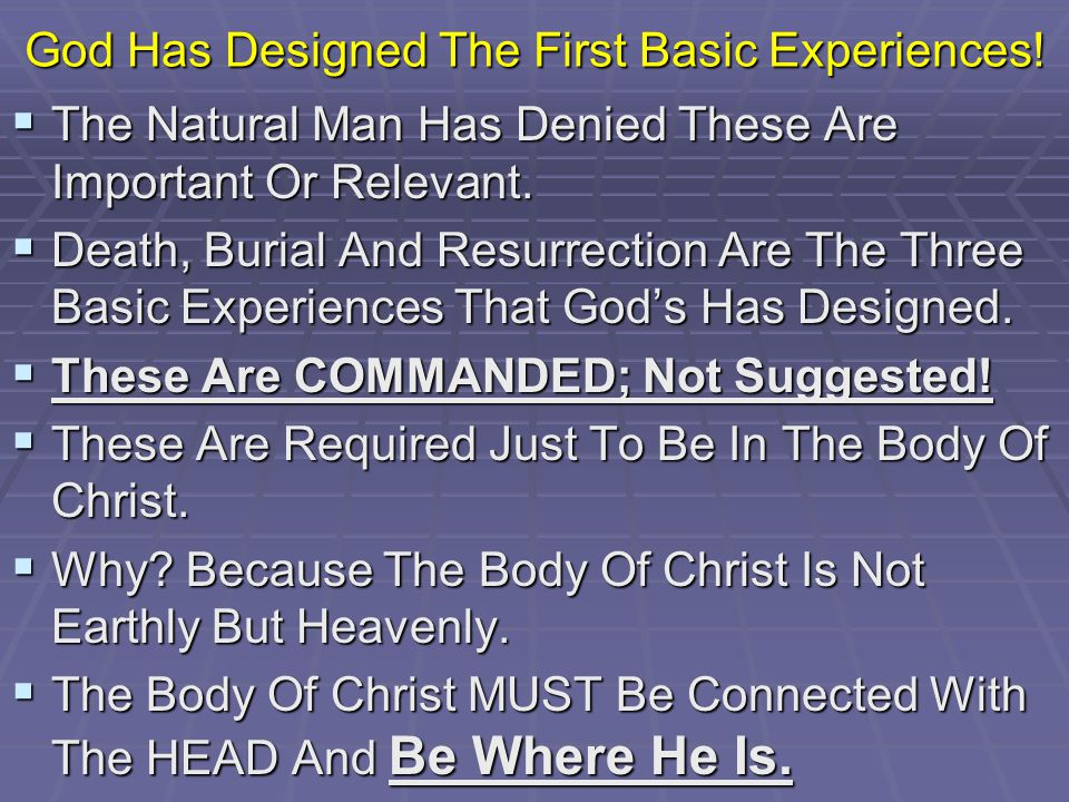 God Has Designed The First Basic Experiences.