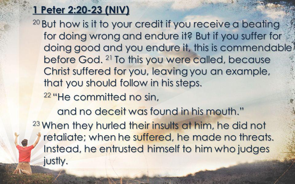 1 Peter 2:20-23 (NIV) 20 But how is it to your credit if you receive a beating for doing wrong and endure it? But if you suffer for doing good and you