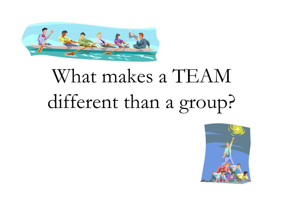 What makes a TEAM different than a group?