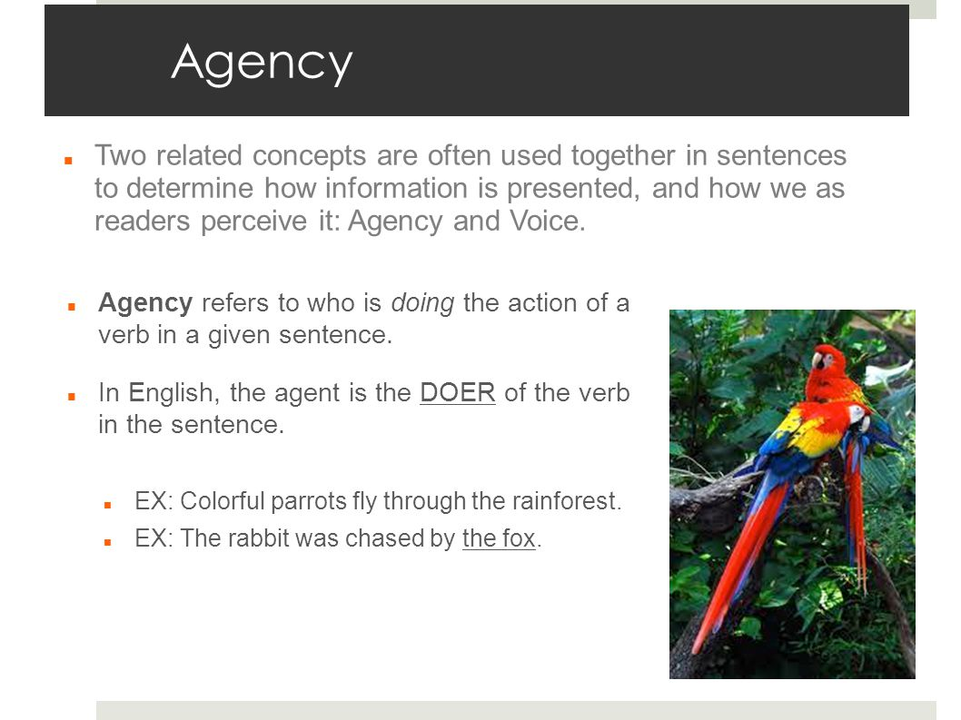 Agency Agency refers to who is doing the action of a verb in a given sentence.