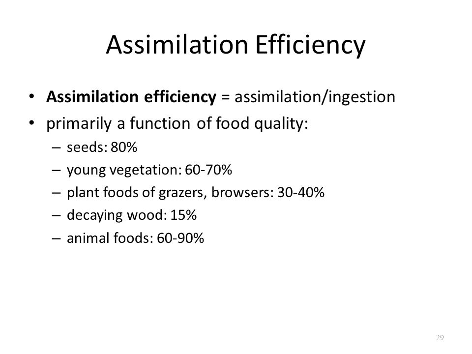 Assimilation Efficiency Assimilation efficiency = assimilation/ingestion primarily a function of food quality: – seeds: 80% – young vegetation: 60-70%