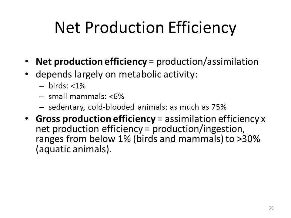 Net Production Efficiency Net production efficiency = production/assimilation depends largely on metabolic activity: – birds: <1% – small mammals: <6%