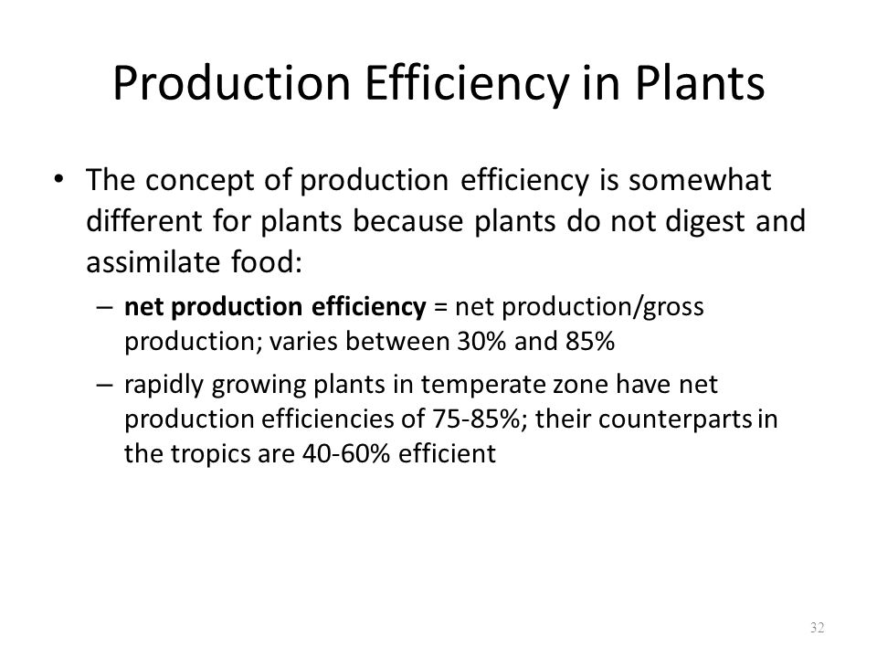 Production Efficiency in Plants The concept of production efficiency is somewhat different for plants because plants do not digest and assimilate food