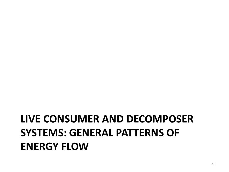 LIVE CONSUMER AND DECOMPOSER SYSTEMS: GENERAL PATTERNS OF ENERGY FLOW 43