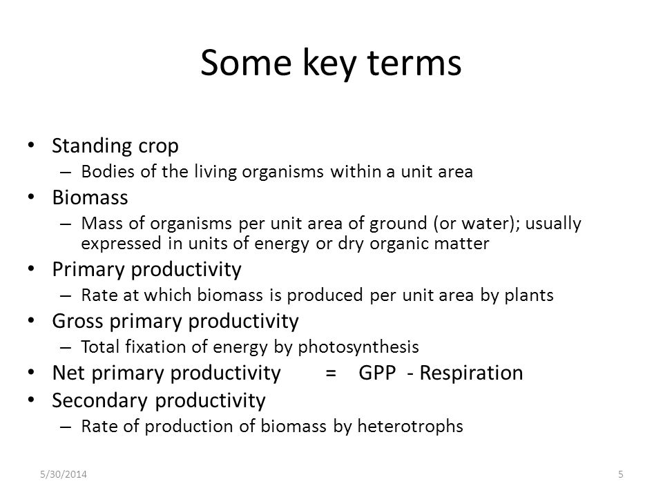 Some key terms Standing crop – Bodies of the living organisms within a unit area Biomass – Mass of organisms per unit area of ground (or water); usual