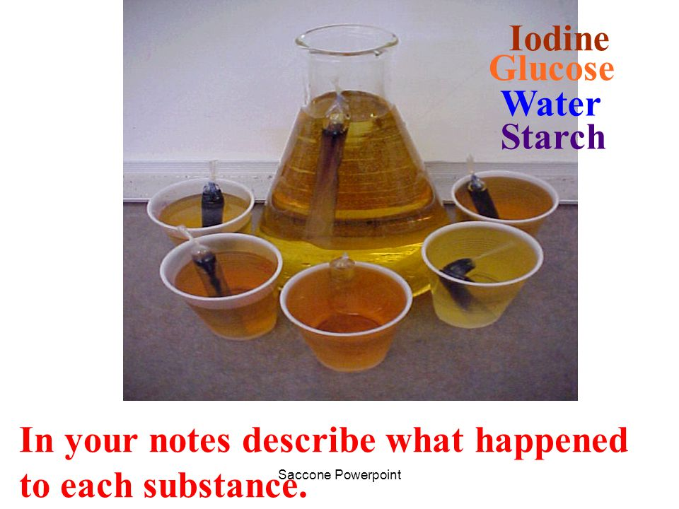 Iodine Glucose Water Starch In your notes describe what happened to each substance.