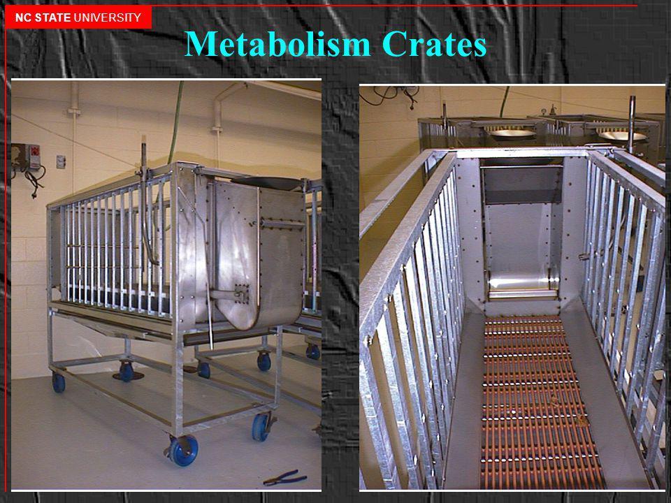 Metabolism Crates NC STATE UNIVERSITY