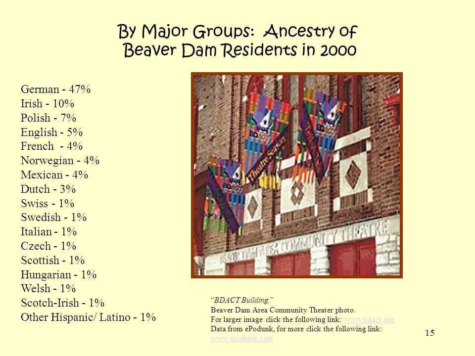 15 By Major Groups: Ancestry of Beaver Dam Residents in 2000 German - 47% Irish - 10% Polish - 7% English - 5% French - 4% Norwegian - 4% Mexican - 4%