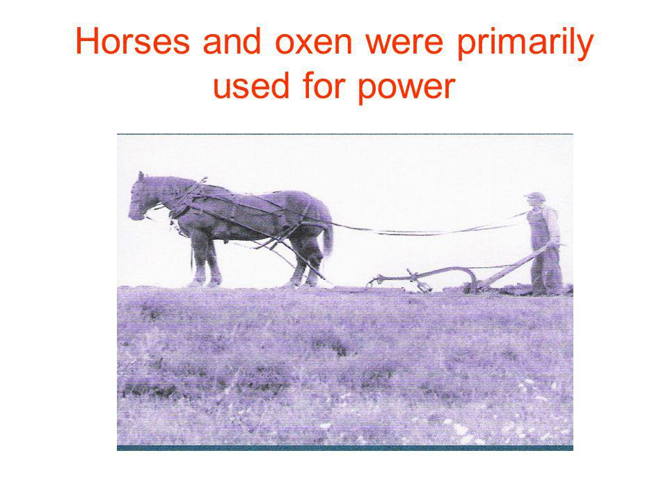 Horses and oxen were primarily used for power