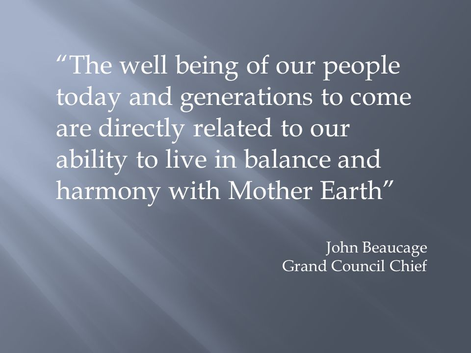 The well being of our people today and generations to come are directly related to our ability to live in balance and harmony with Mother Earth John Beaucage Grand Council Chief