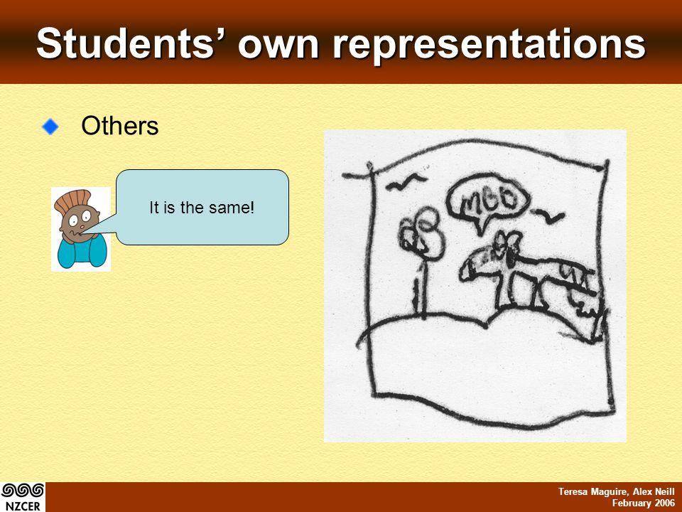 Teresa Maguire, Alex Neill February 2006 Students own representations Others It is the same!