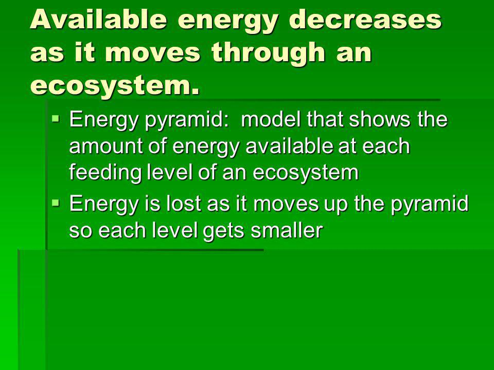Available energy decreases as it moves through an ecosystem. Energy pyramid: model that shows the amount of energy available at each feeding level of