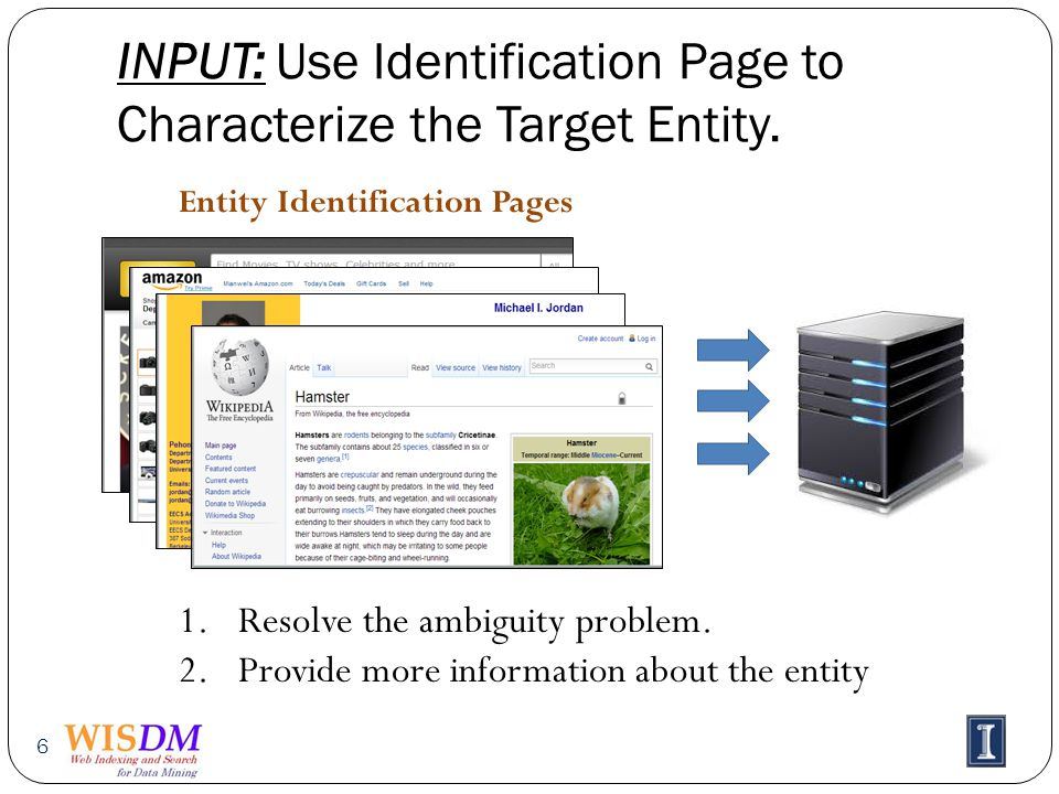 INPUT: Use Identification Page to Characterize the Target Entity.