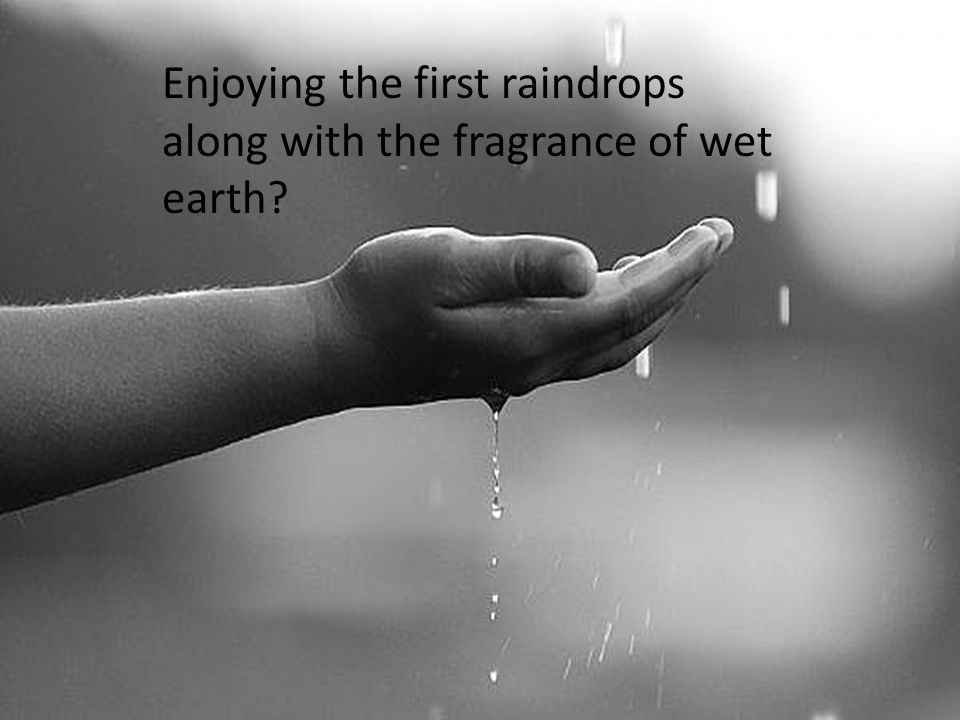 Enjoying the first raindrops along with the fragrance of wet earth?