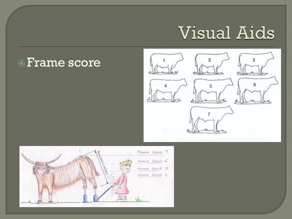 Frame score