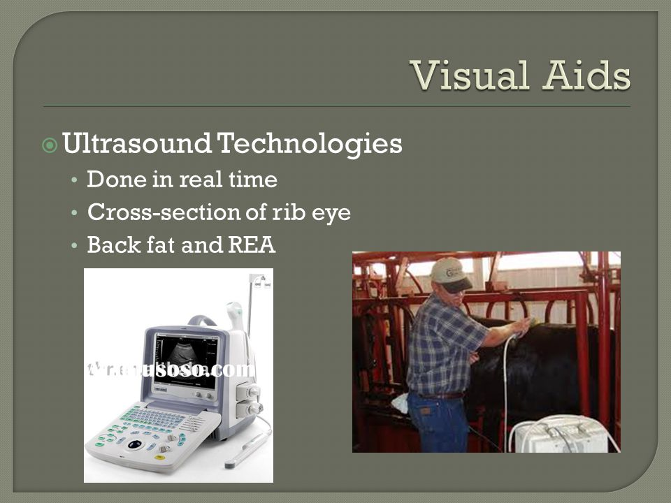 Ultrasound Technologies Done in real time Cross-section of rib eye Back fat and REA