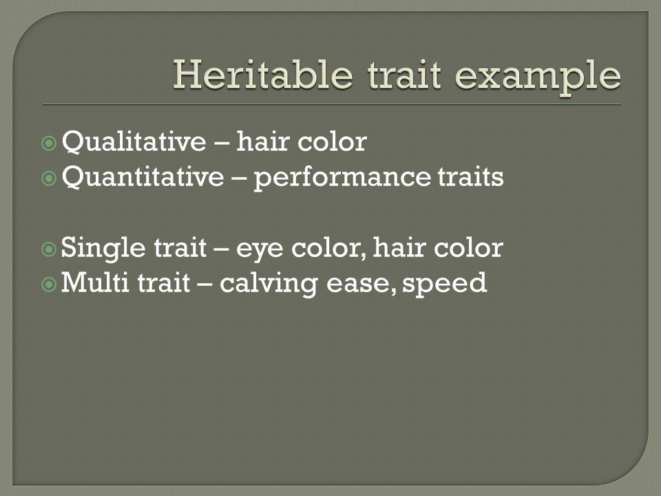 Qualitative – hair color Quantitative – performance traits Single trait – eye color, hair color Multi trait – calving ease, speed