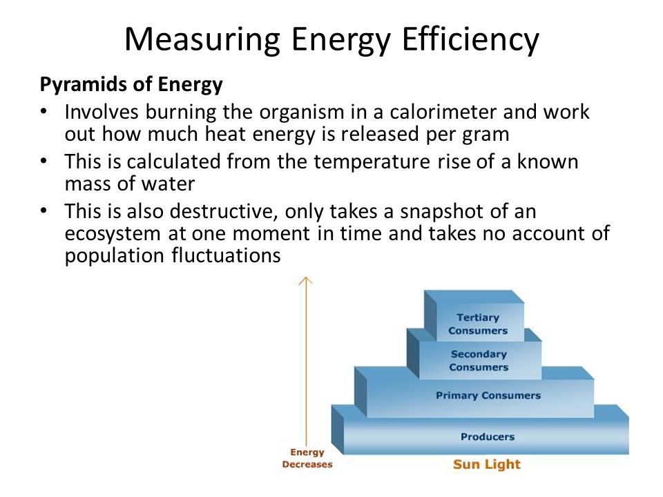 Measuring Energy Efficiency Pyramids of Energy Involves burning the organism in a calorimeter and work out how much heat energy is released per gram This is calculated from the temperature rise of a known mass of water This is also destructive, only takes a snapshot of an ecosystem at one moment in time and takes no account of population fluctuations