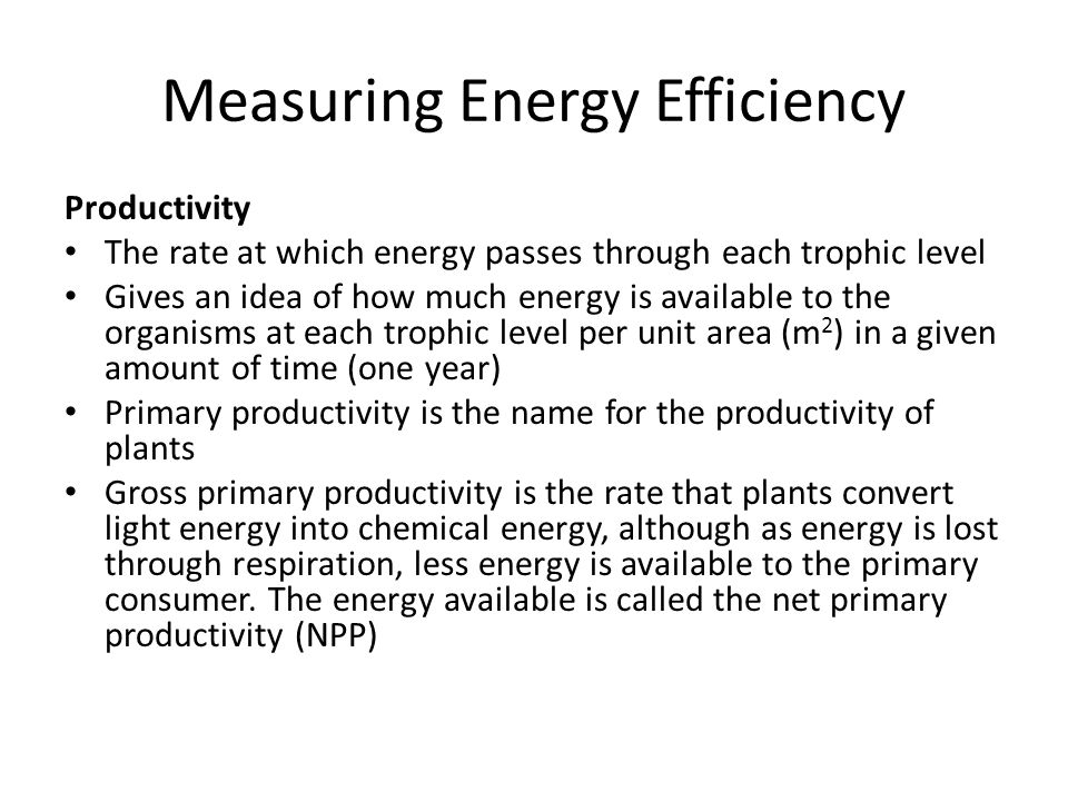 Measuring Energy Efficiency Productivity The rate at which energy passes through each trophic level Gives an idea of how much energy is available to the organisms at each trophic level per unit area (m 2 ) in a given amount of time (one year) Primary productivity is the name for the productivity of plants Gross primary productivity is the rate that plants convert light energy into chemical energy, although as energy is lost through respiration, less energy is available to the primary consumer.