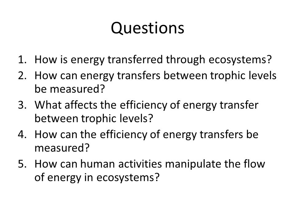 Questions 1.How is energy transferred through ecosystems.