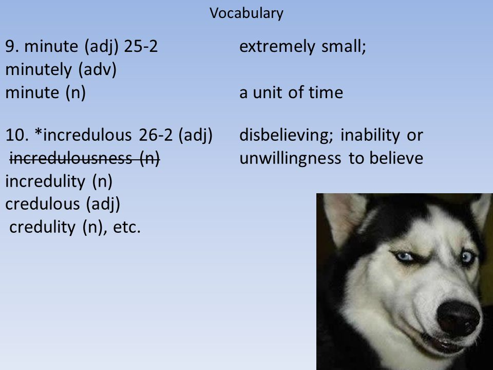 Vocabulary 9.minute (adj) 25-2 minutely (adv) minute (n) extremely small; a unit of time 10.