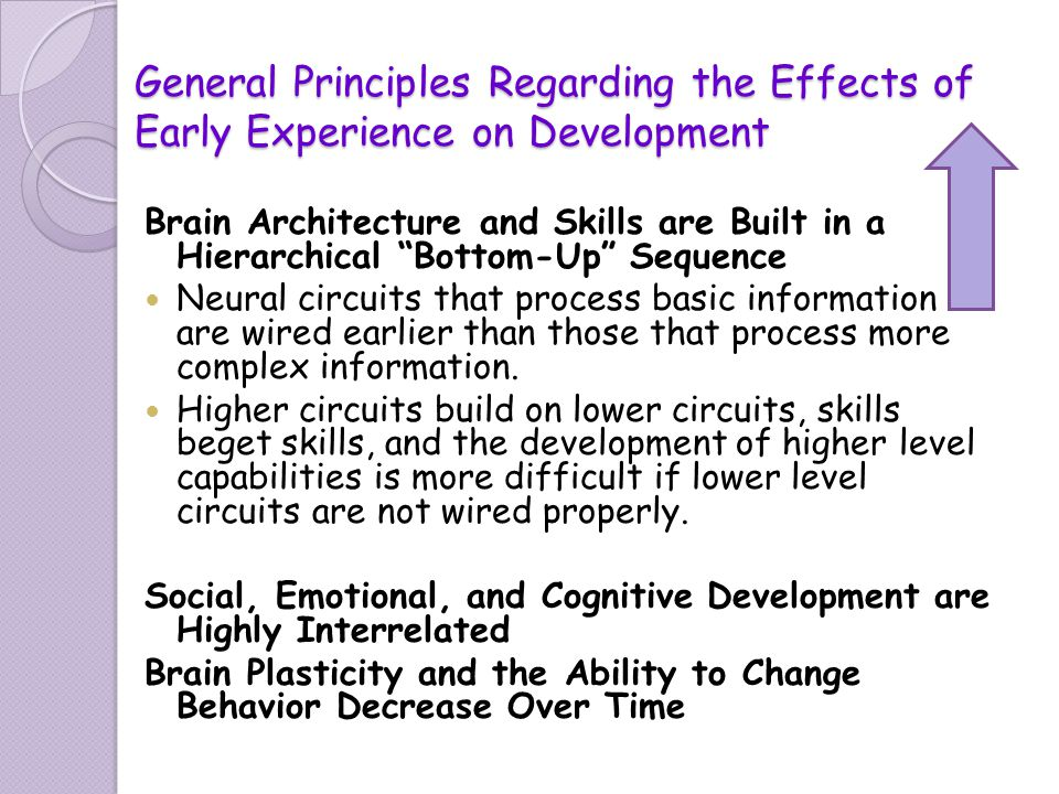 General Principles Regarding the Effects of Early Experience on Development Brain Architecture and Skills are Built in a Hierarchical Bottom-Up Sequen