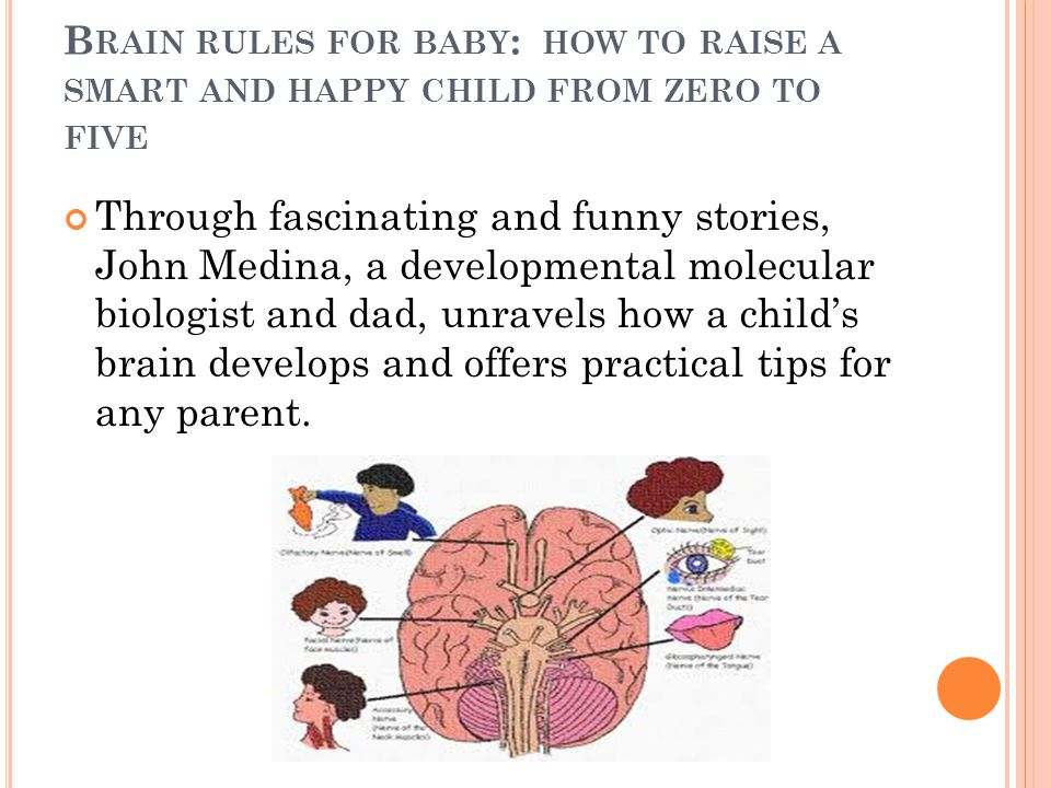B RAIN RULES FOR BABY : HOW TO RAISE A SMART AND HAPPY CHILD FROM ZERO TO FIVE Through fascinating and funny stories, John Medina, a developmental mol