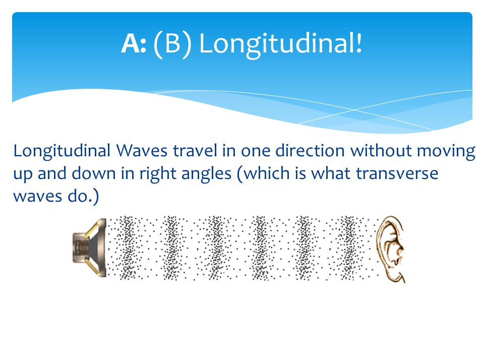 Longitudinal Waves travel in one direction without moving up and down in right angles (which is what transverse waves do.) A: (B) Longitudinal!