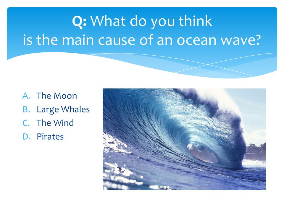 A.The Moon B.Large Whales C.The Wind D.Pirates Q: What do you think is the main cause of an ocean wave?