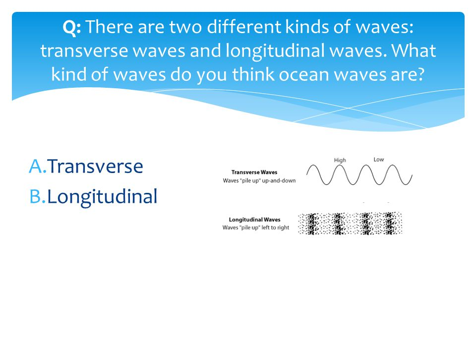 A.Transverse B.Longitudinal Q: There are two different kinds of waves: transverse waves and longitudinal waves. What kind of waves do you think ocean