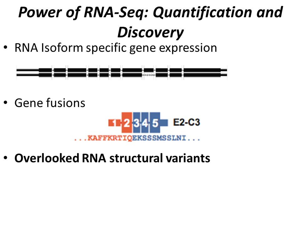 Paired-end RNA-Seq Matched sequences are obtained for each library molecule CTTC…..GAAG GGAC…..GCCT Data: millions of 70-150+ bp A/C/G/T sequences