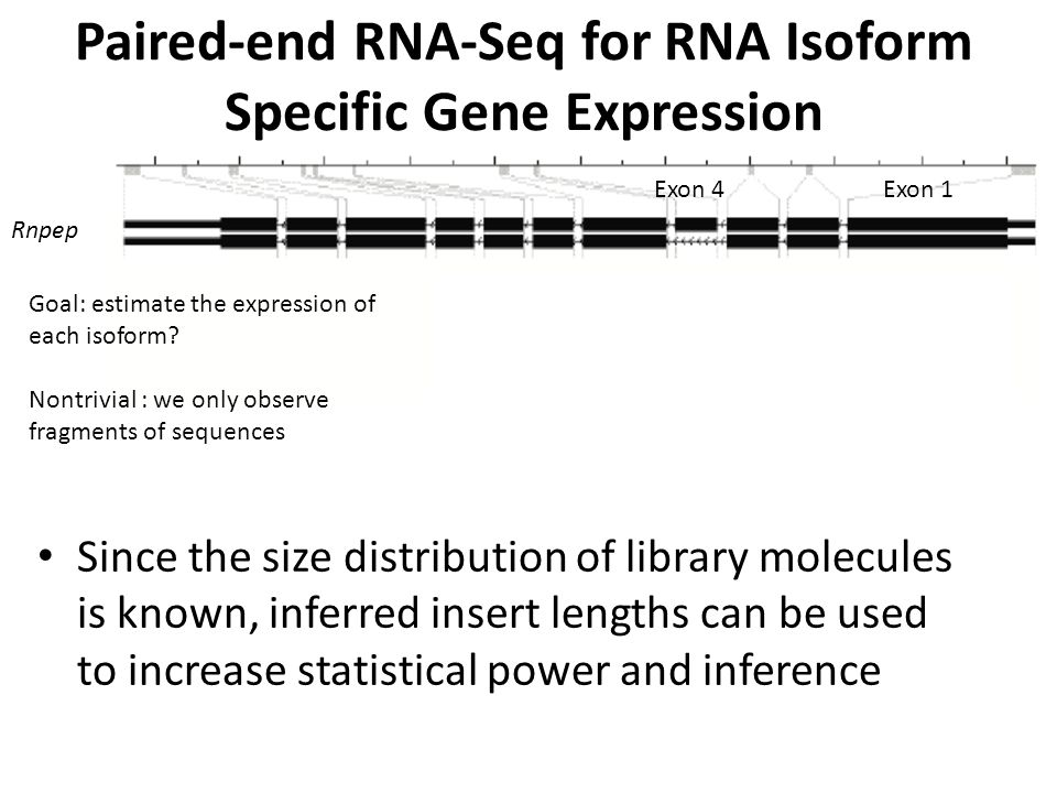 Paired-End RNA-Seq for Gene Fusions in Ovarian Tumors Paired-end sequencing of poly-A selected RNA from 12 late stage tumors– genome wide search Top hit of our algorithm : ESRRA-C11orf20 ESRRA Fusion C11orf20 ESRRA Fusion C11orf20 Isoform-specific estimation: ESRRA and the fusion are expressed at roughly equal magnitude (Salzman, Jiang, Wong ) Salzman et al, 2011